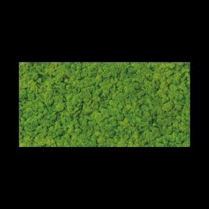 Fresh Moss Glass Inserto decorative tile - 11.5 x 23.5