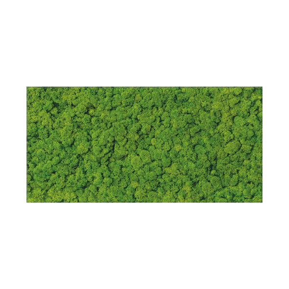 Fresh Moss Glass Inserto decorative tile - 11.5 x 23.5